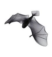 BATS - GLITTERED NET