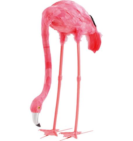 FEEDING FLAMINGO Pink