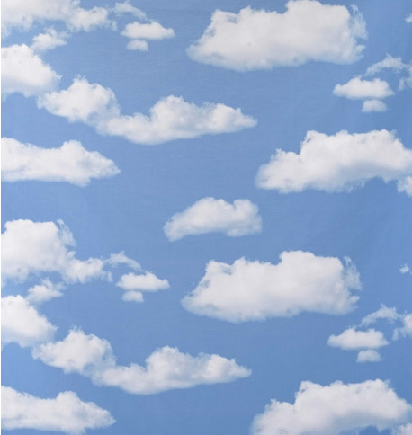 CLOUDS PHOTOPRINT FABRIC Blue and White