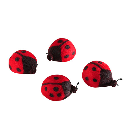 LADYBIRDS Red And Black