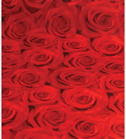 ROSES PHOTOPRINT FABRIC