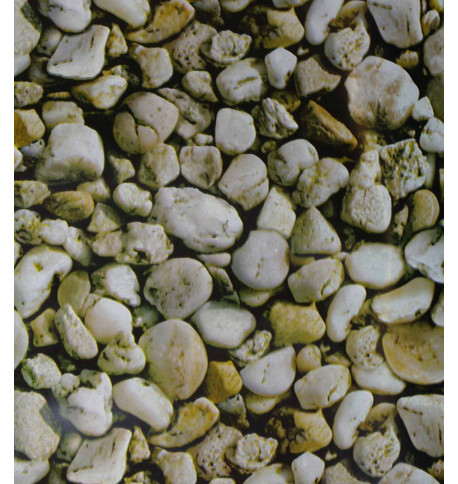 ROCKS PHOTOPRINT PVC Multi
