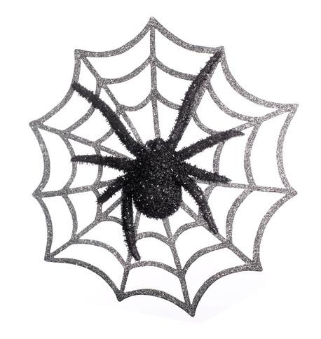 SPIDER ON WEB Black