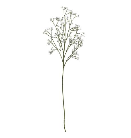 GYPSOPHILIA SPRAY White