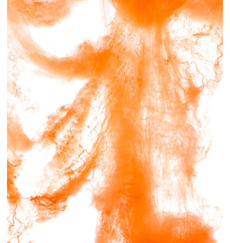 SPIDER WEB - ORANGE Orange