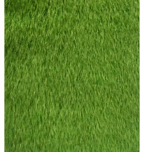 ARIZONA Green