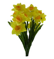 DAFFODIL BUNCH WITH LEAVES