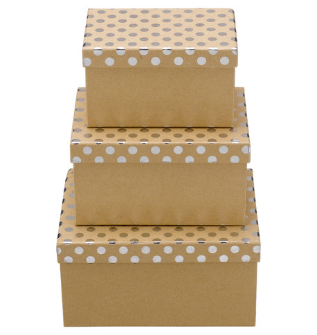 RECTANGULAR KRAFT BOXES - SILVER SPOTS Silver