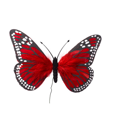 LARGE FEATHER BUTTERFLIES - RED Red