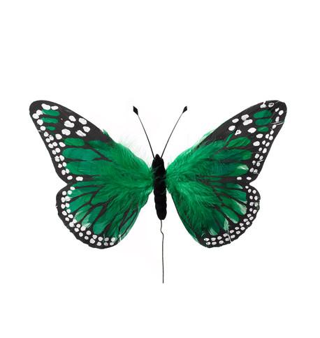 LARGE FEATHER BUTTERFLIES - GREEN Green