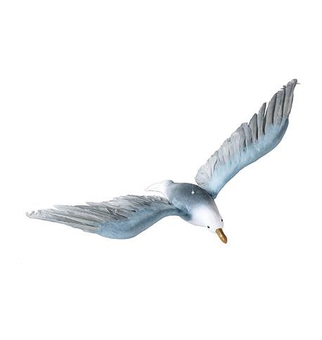 FLYING SEAGULL Grey