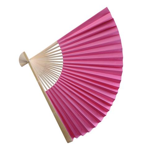 PAPER FAN - PINK Pink