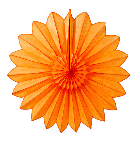 DAISY FAN - ORANGE Orange