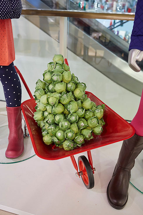 Oversized brussels sprouts - Image 8