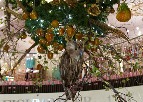 Fortnum & Mason The Art of Christmas - Small Image 1