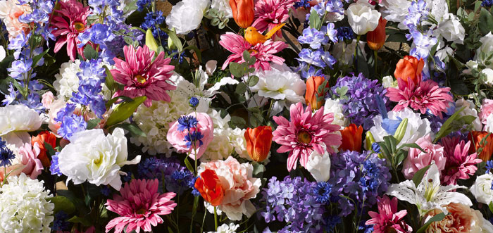 Say it with flowers this spring!