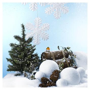 Themes - Snow & Ice