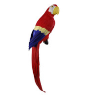 MACAW - RED - Red