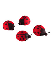 LADYBIRDS - Red And Black