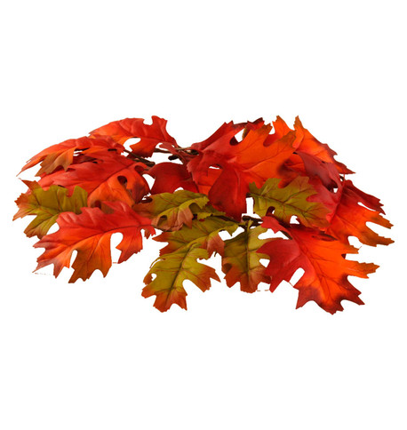 OAK LEAVES  Multi