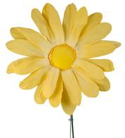PARCHMENT GERBERA - Yellow