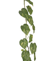 GIANT POTHOS GARLAND  - Green