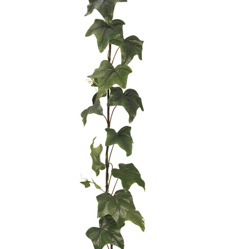 GIANT IVY GARLAND  Green