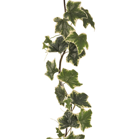 GIANT IVY GARLAND - VARIEGATED Variegated