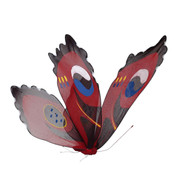 PEACOCK BUTTERFLY - Red