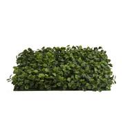 BOXWOOD PANELS - Green