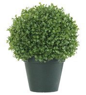 BOX BALL TOPIARY - Green