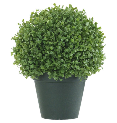 BOX BALL TOPIARY Green