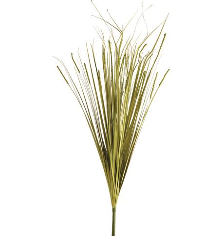 ONION GRASS SPRAY Green