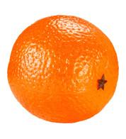 ORANGES - Orange