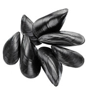 MUSSELS - Black