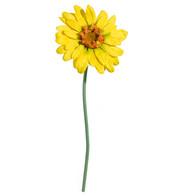GERBERA GRANDE - YELLOW - Yellow