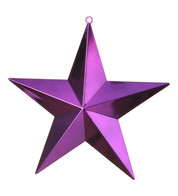 SHINY STARS - PURPLE - Purple