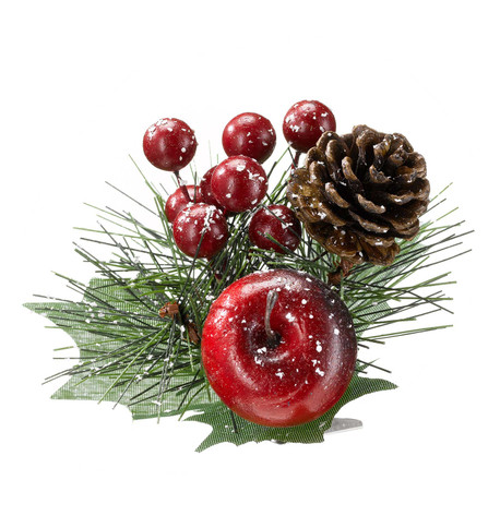 PINE CONE AND BERRY PICK Multi