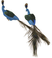 PEACOCK DECORATION - Blue