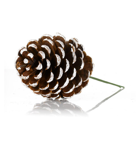 PINE CONE PICKS - WHITE TIPPED White Tipped