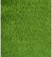 ARIZONA - Green