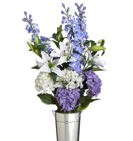 DELPHINIUMS Blue