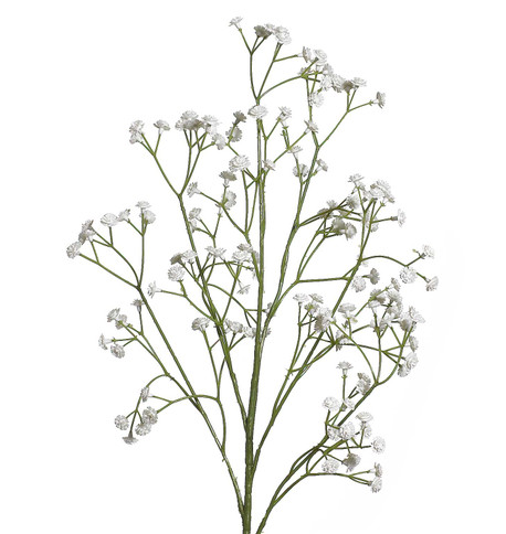 GYPSOPHILIA SPRAY White