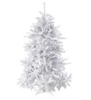 WHITE PINE TREE - White
