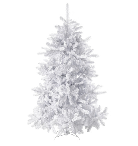 WHITE PINE TREE White
