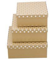 SQUARE KRAFT BOXES - SILVER SPOTS - Silver