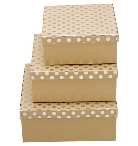 SQUARE KRAFT BOXES - SILVER SPOTS Silver
