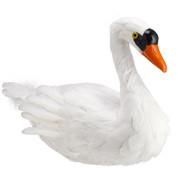 SWAN - Warm White