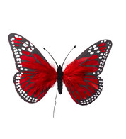 FEATHER BUTTERFLIES - RED - Red