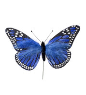 LARGE FEATHER BUTTERFLIES - BLUE - Blue
